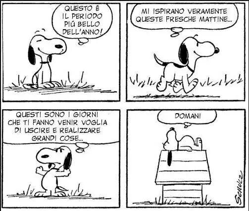 Non rimandare quello che puoi fare oggi, a domani! Snoopy